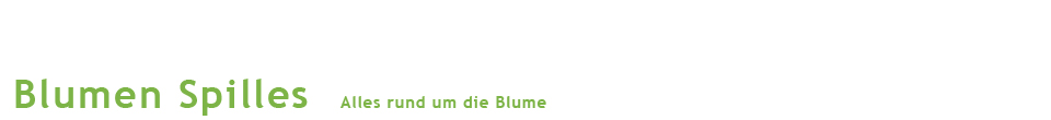 Logo Blumen Spilles